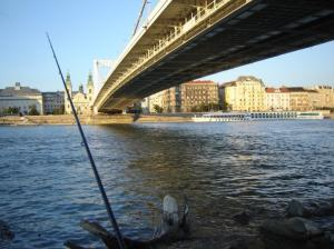 Street fishing Budapesten