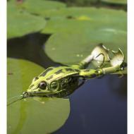 Lunkerhunt Prop Frog - Green Tea 14g/8cm