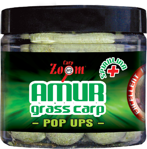 Pop-Up bojli - Amur / 80gr